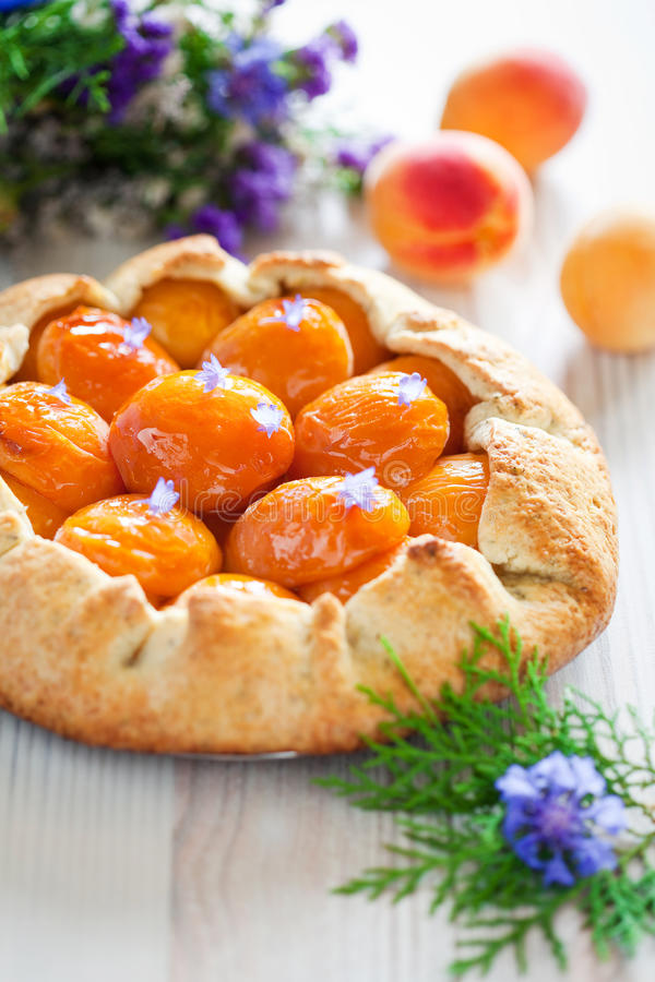 Free Tart With Apricots Royalty Free Stock Image - 25491086