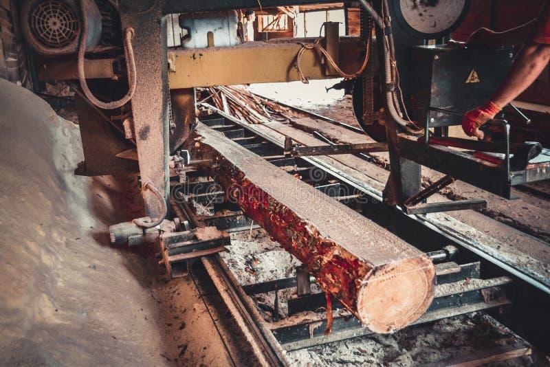 tartak Proces machining notuje dalej tartaczne maszyn pi?y drzewny baga?nik fotografia stock