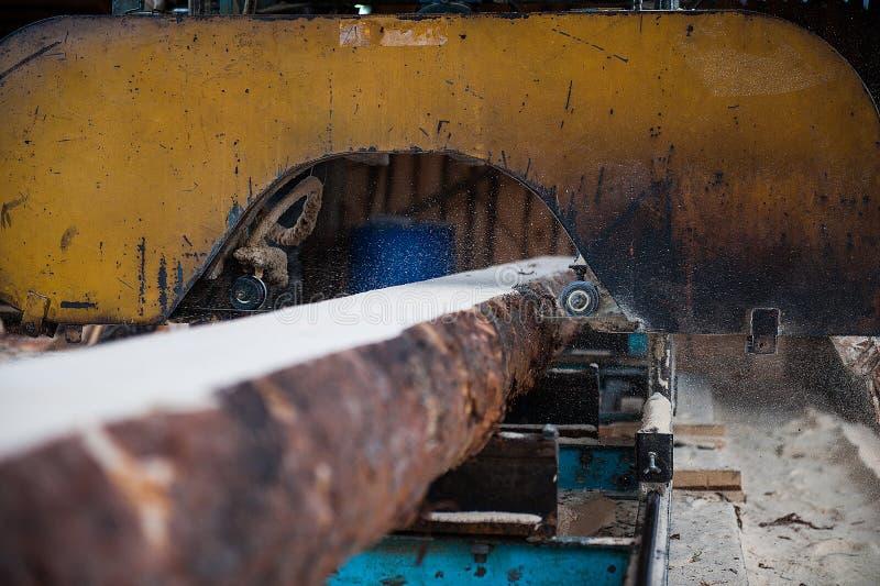 tartak Używać dla tnącego drewna na deskach fotografia royalty free