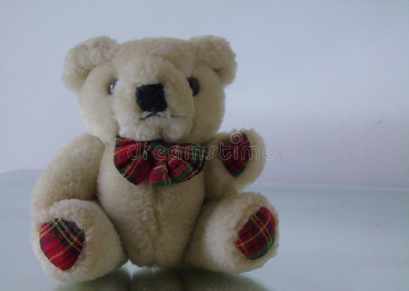 Tartan Teddy Bear images stock