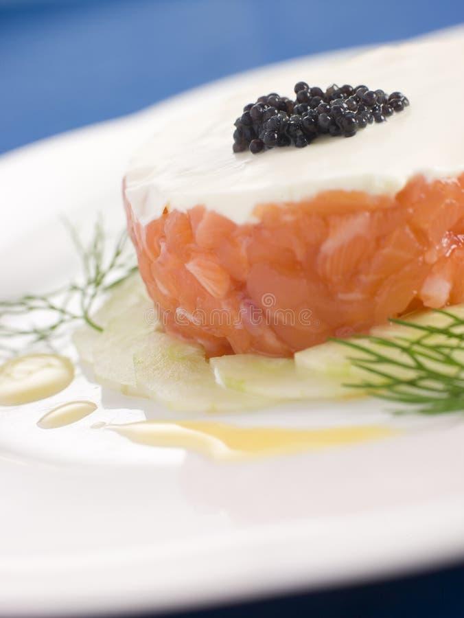 Tartare de la nata de color salmón salvaje Fraiche fotografía de archivo libre de regalías