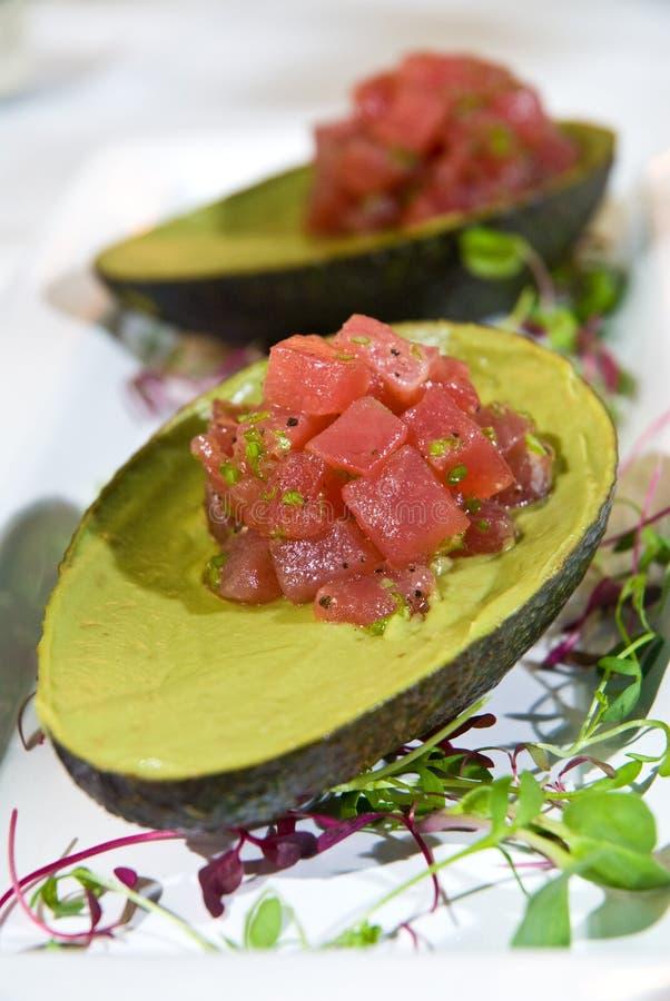 tartare tonfisk royaltyfri foto