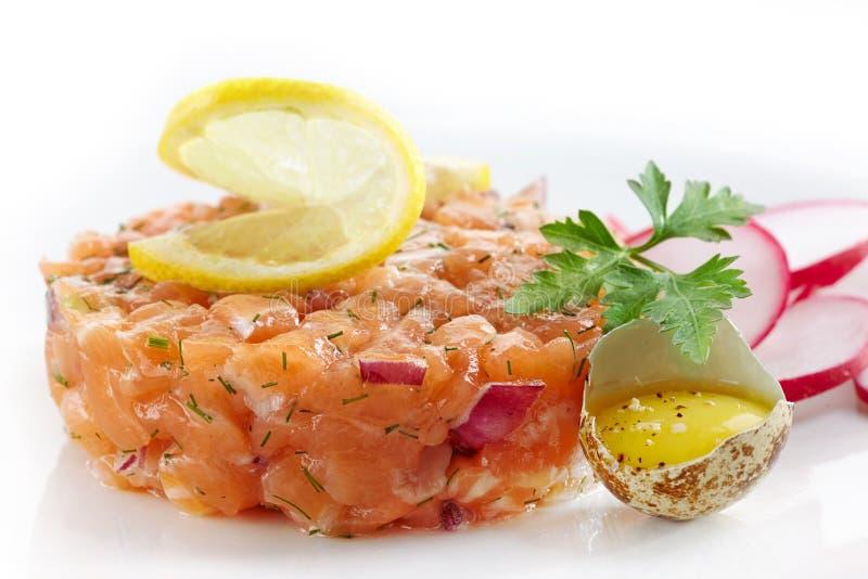 Tartaro di color salmone fresco immagine stock libera da diritti