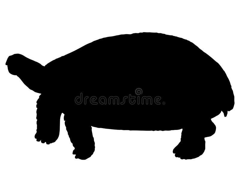 Tartaruga ilustração stock