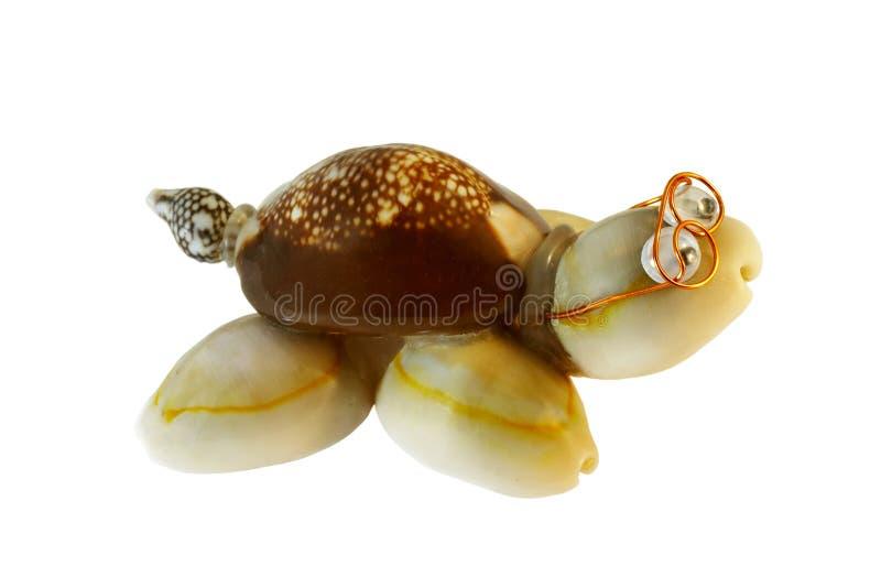 Tartaruga foto de stock royalty free