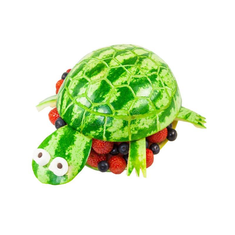 Tartaruga cinzelada de uma melancia fotos de stock royalty free