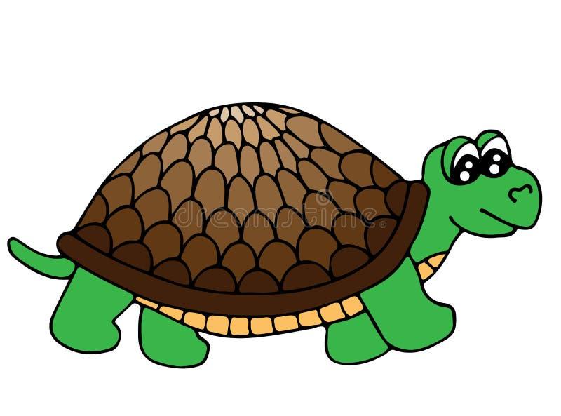 Tartaruga colorida bonito isolada no fundo branco ilustração stock