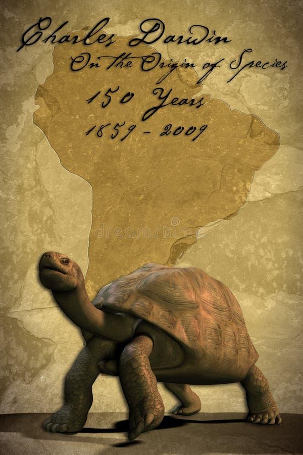 Tartaruga de Galápagos (com trajeto de grampeamento) ilustração stock