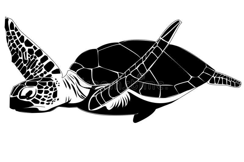 Tartaruga de mar ilustração stock