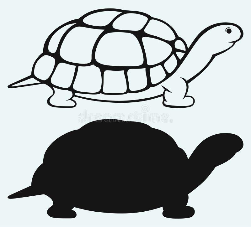 Tartaruga de mar ilustração do vetor