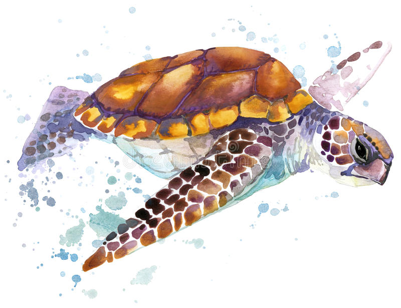 Tartaruga de mar Ilustração da aquarela da tartaruga de mar Palavra subaquática ilustração stock