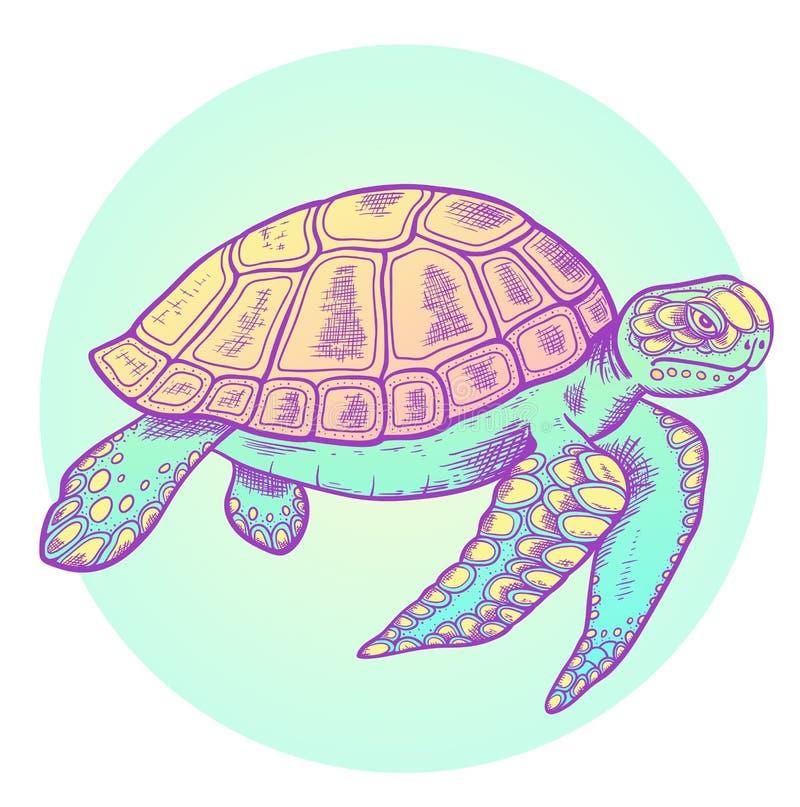 Tartaruga de mar tirada mão ilustração stock