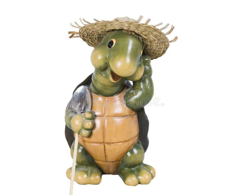 Tartaruga del giardino fotografia stock libera da diritti