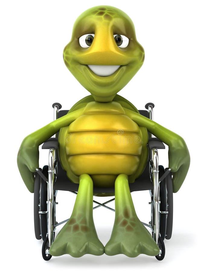 Tartaruga di divertimento con una sedia a rotelle royalty illustrazione gratis
