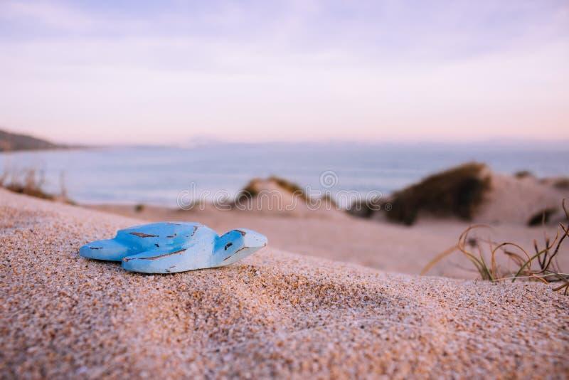 Tartaruga di legno blu immagine stock