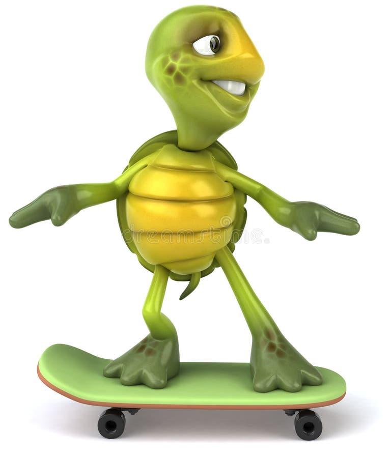 Tartaruga do divertimento em um skate ilustração royalty free