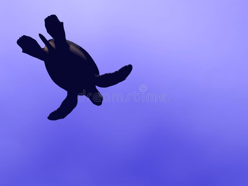 Tartaruga do EL ilustração do vetor