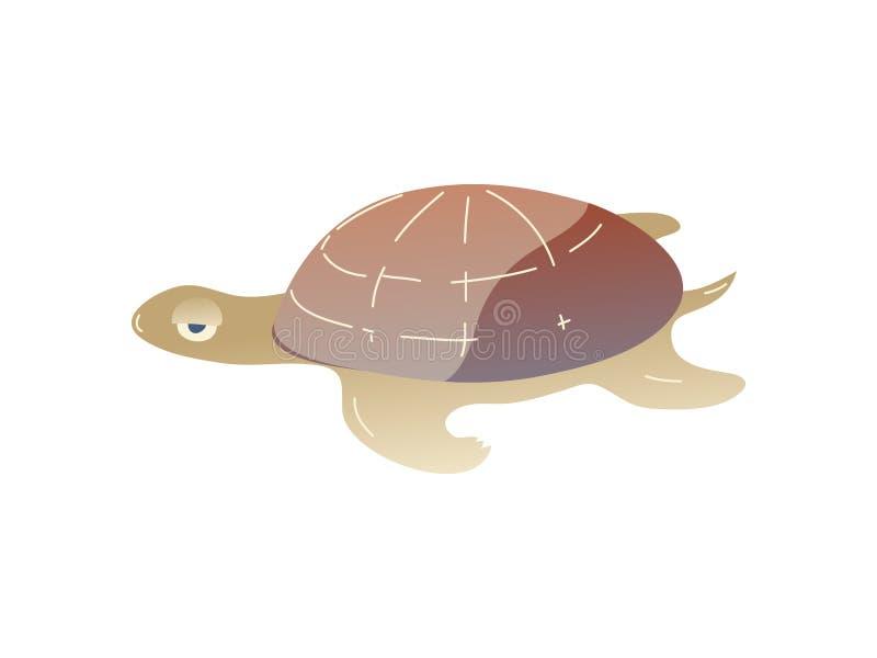 Tartaruga dos desenhos animados no fundo branco Vida da água ilustração do vetor