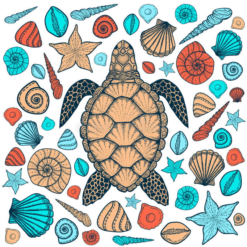 Tartaruga e shell de mar na linha estilo da arte Ilustração desenhada mão do vetor ilustração royalty free