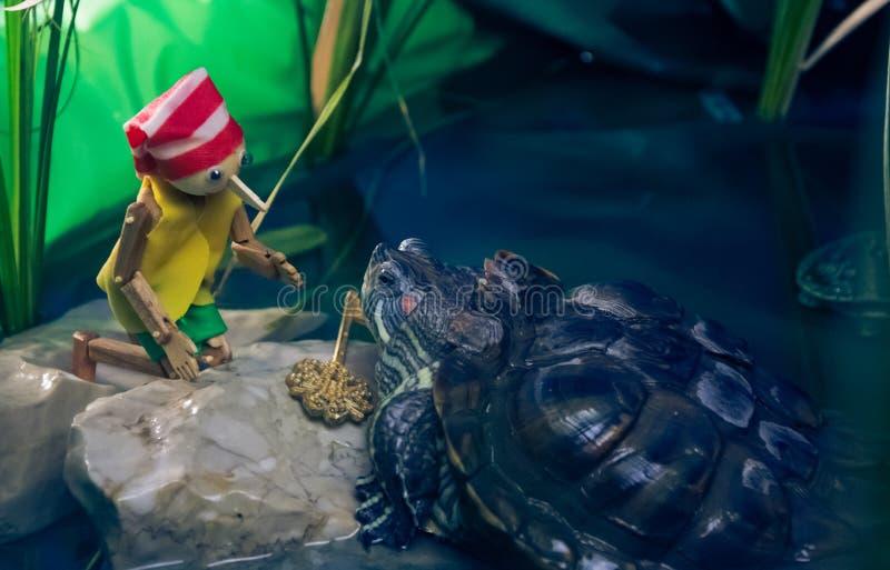 A tartaruga encontra Pinocchio e dá-lhe a chave dourada fotos de stock royalty free