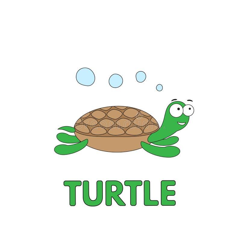 Tartaruga Flashcard del fumetto per i bambini illustrazione vettoriale