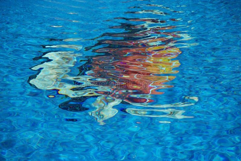 Tartaruga na associação fotografia de stock