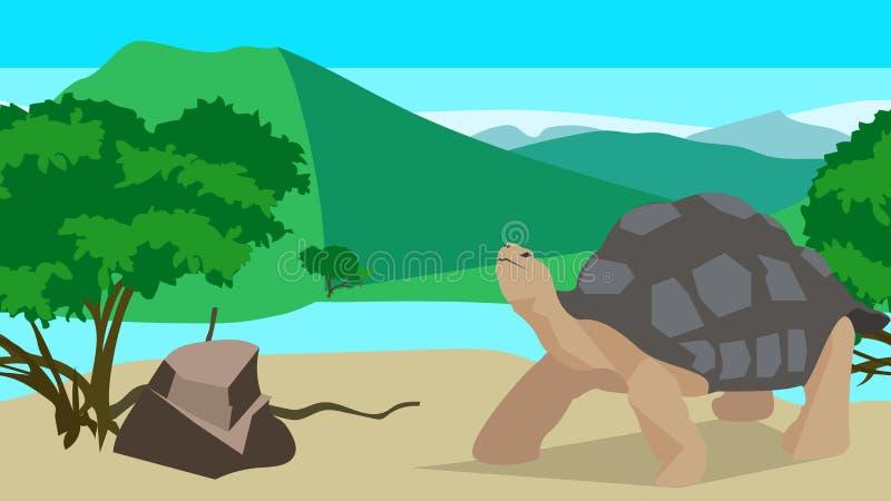 Tartaruga perto do rio, sem emenda, animal e ilustração stock