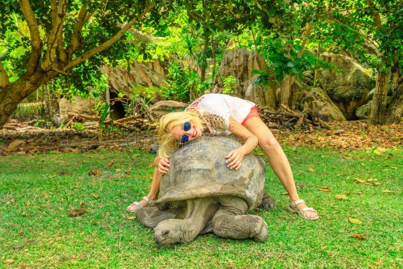 Tartaruga vecchia di tenuta turistica immagine stock