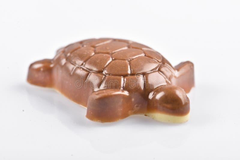 Tartarugas do chocolate imagem de stock royalty free