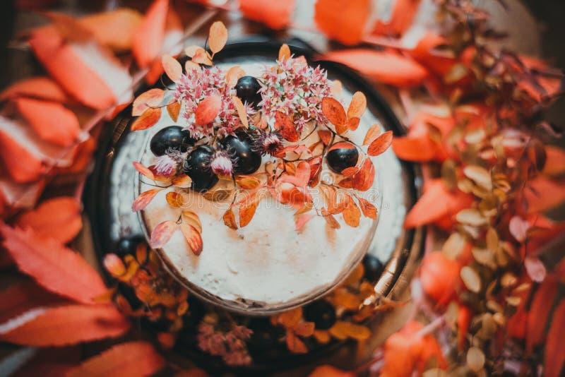 Tarte de raisin photographie stock