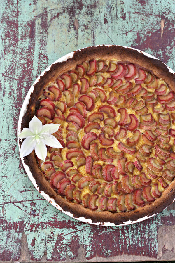 Tarte de rhubarbe photo libre de droits