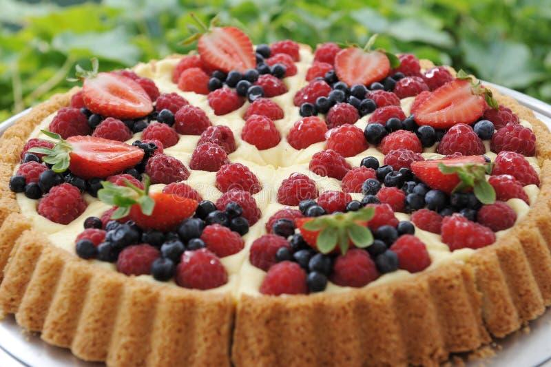 Tarte de tarte de fruit images stock