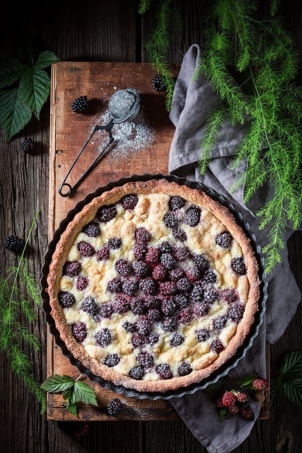 Tarte doux et fait maison de mûre fait de fruits frais image libre de droits