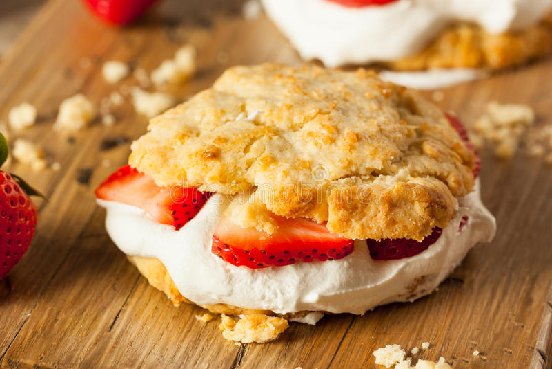 Tarte sablée faite maison de fraise avec la crème fouettée photographie stock libre de droits