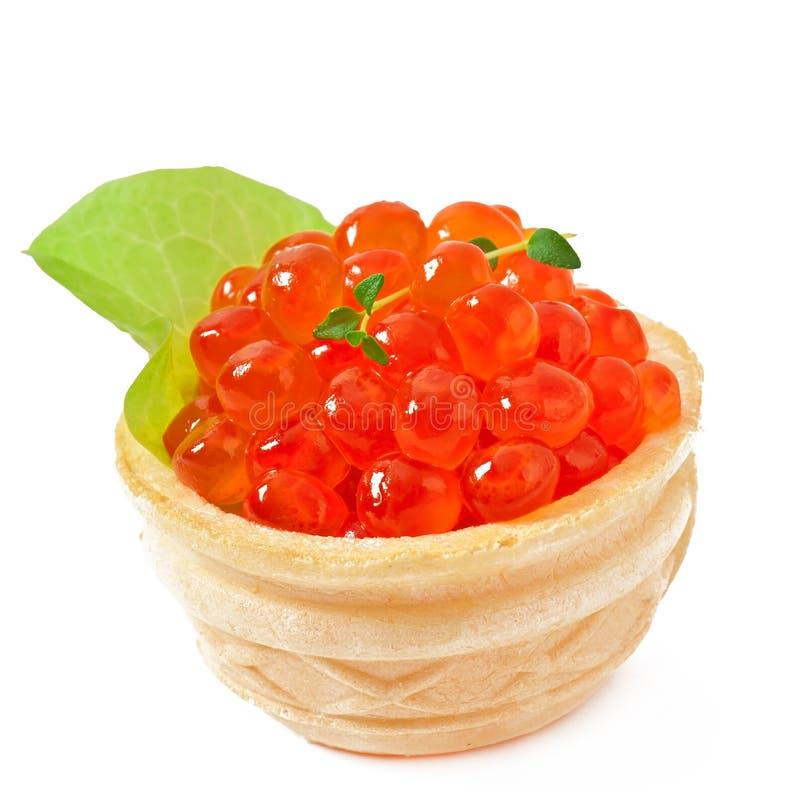 Tartelettes avec le caviar rouge photos libres de droits