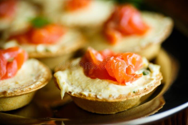 Tartelettes avec le remplissage de fromage et la viande saumonée salée image stock