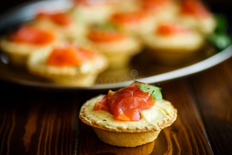 Tartelettes avec le remplissage de fromage et la viande saumonée salée photos libres de droits
