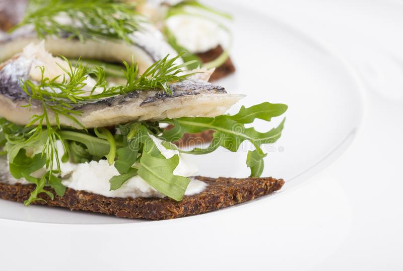 Tartine with herring. Tartine with herring and dill served on a white plate royalty free stock photography