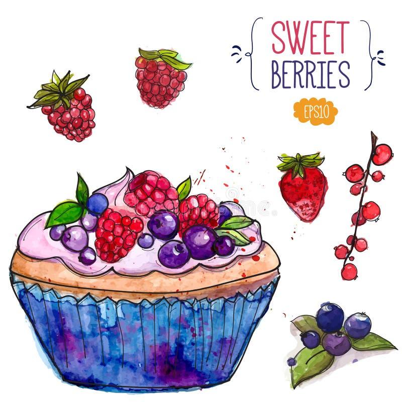 Tartlet dekorował z jagodami i truskawką, rasberry, czerwony rodzynek, ilustracja wektor