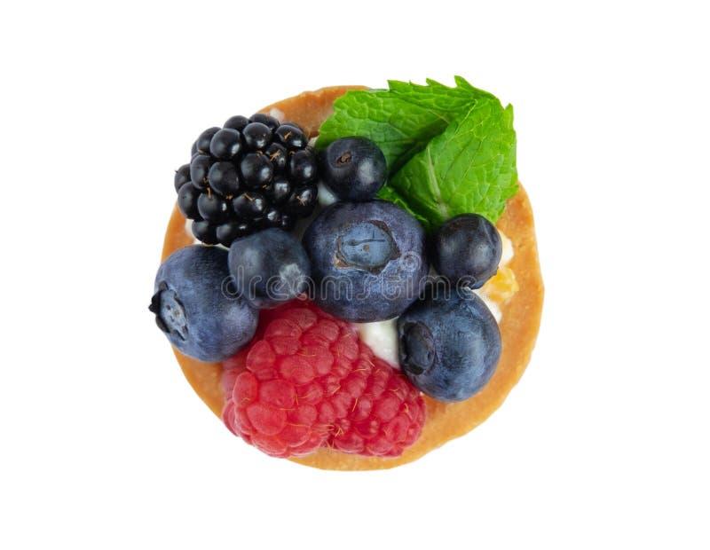 Tartlet mit Beeren der Himbeere, Heidelbeere, Brombeere, Blaubeere lokalisiert auf weißem Hintergrund Kuchen mit Beeren, tadellos stockfoto