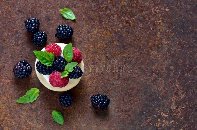 Tartlet mit frischen Beeren stockfotografie