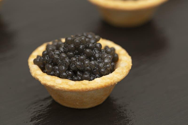 Tartlets con cierre negro del caviar para arriba Cierre de la comida gastr?noma para arriba, aperitivo delicatessen Alimento gast fotografía de archivo