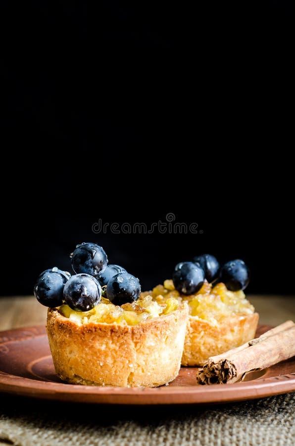 Tartlets mit Apfel, Trauben und Zimt auf einer Lehmplatte lizenzfreies stockfoto