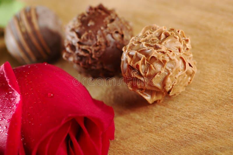 Tartufi di cioccolato con una Rosa rossa immagini stock libere da diritti