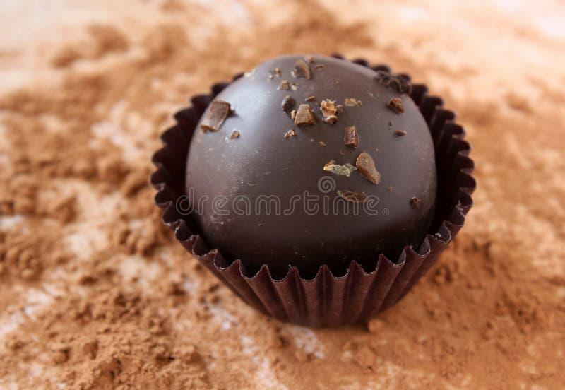 Tartufo di cioccolato immagini stock libere da diritti