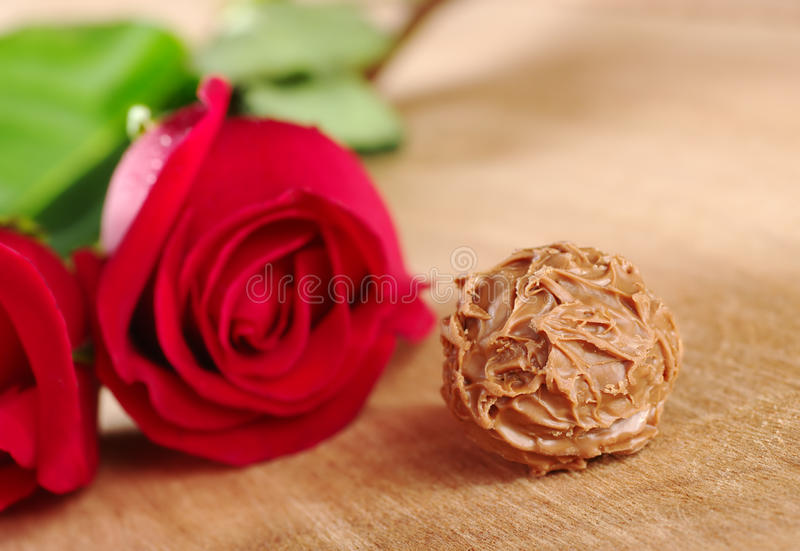 Tartufo di cioccolato con le rose rosse immagini stock libere da diritti