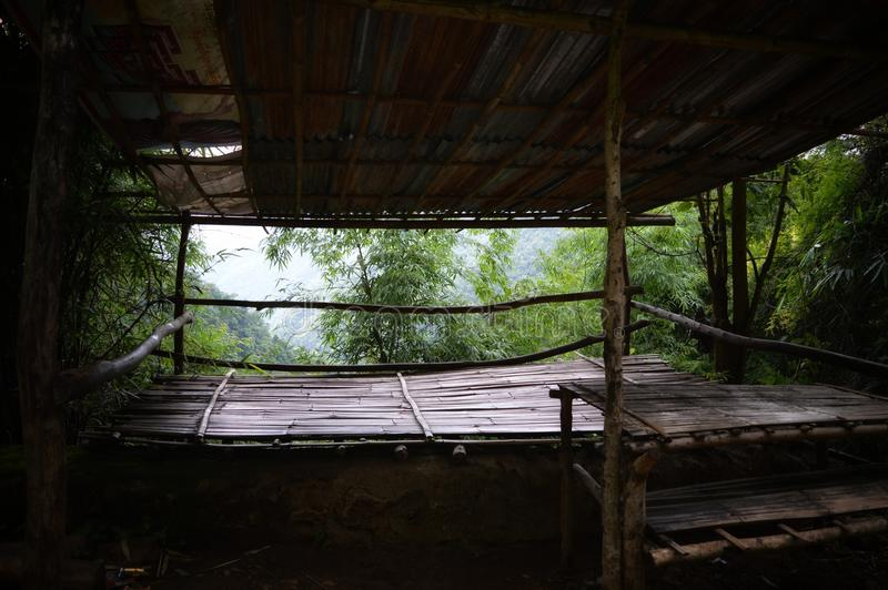 Tarzan dom zdjęcia royalty free