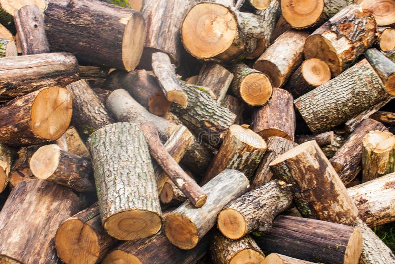 Tas de bois de bois de charpente coupé Pile des rondins en bois Bois de construction empilé de bois de chauffage images stock