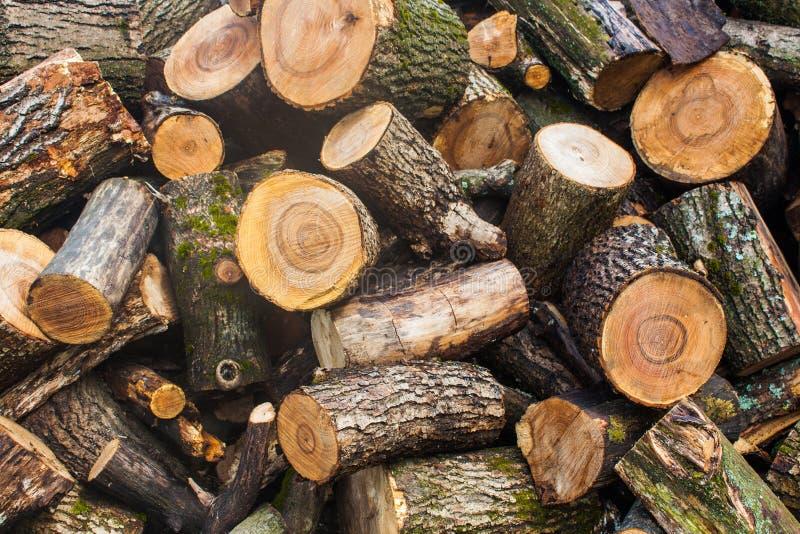Tas de bois de bois de charpente coupé Pile des rondins en bois Bois de construction empilé de bois de chauffage photo libre de droits