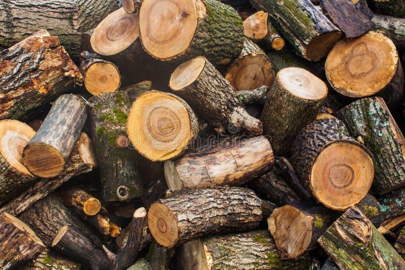 Tas de bois de bois de charpente coupé Pile des rondins en bois Bois de construction empilé de bois de chauffage photos libres de droits